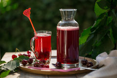Homemade sour cherry compote in glass cup with jar on bamboo tray Royalty Free Stock Photography