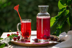 Homemade sour cherry compote in glass cup with jar on bamboo tray Stock Photos