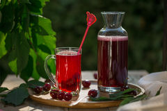 Homemade sour cherry compote in glass cup with jar on bamboo tray Stock Photography
