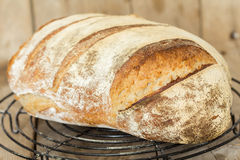 Homemade sourdough bread. Freshly baked until crispy. Stock Photos