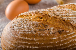 Homemade sourdough bread rustic Royalty Free Stock Photography