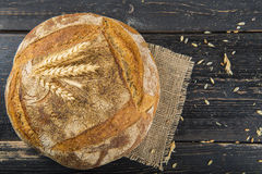 Homemade sourdouhg bread loaf Stock Photography