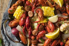 Homemade Southern Crawfish Boil. With Potatoes Sausage and Corn stock photo