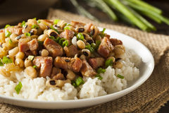 Homemade Southern Hoppin John stock images