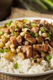 Homemade Southern Hoppin John royalty free stock photos