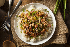 Homemade Southern Hoppin John Royalty Free Stock Photography