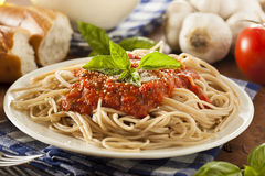 Homemade Spaghetti with Marinara Sauce Royalty Free Stock Photos