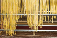 Homemade spaghetti Royalty Free Stock Photos