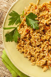 Homemade Spanish Rice with Parsley Royalty Free Stock Image