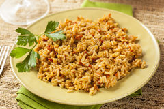 Homemade Spanish Rice with Parsley Stock Images