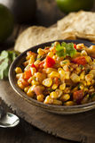 Homemade Spicy Corn Salsa Royalty Free Stock Images