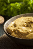Homemade Spicy Mustard Sauce Stock Photography