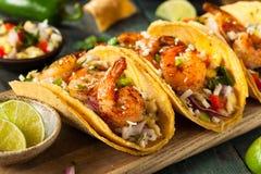 Homemade Spicy Shrimp Tacos Royalty Free Stock Photos