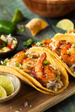 Homemade Spicy Shrimp Tacos. With Coleslaw and Salsa Stock Image