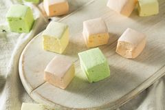Homemade Square Fruity Colorful Marshmallows stock photo