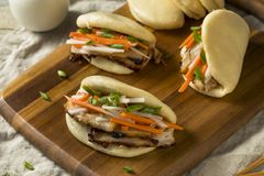 Homemade Steamed Pork Belly Bao Buns. With Veggies stock photography