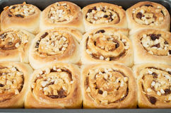 Homemade sticky cinnamon buns Stock Images