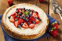 Homemade Strawberry and Blueberry Cheesecake Stock Photo