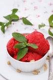 Homemade strawberry ice cream Royalty Free Stock Images