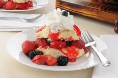 Homemade strawberry shortcake Stock Photography