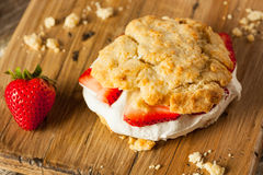 Homemade Strawberry Shortcake with Whipped Cream Stock Images