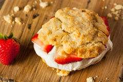 Homemade Strawberry Shortcake with Whipped Cream Royalty Free Stock Image
