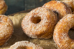 Homemade Sugary Cronut Donuts Royalty Free Stock Photos