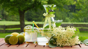 Homemade summer drink of elderflower Stock Photos