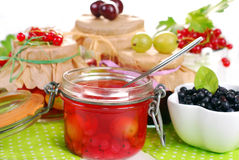 Homemade summer fruit preserves Stock Photography
