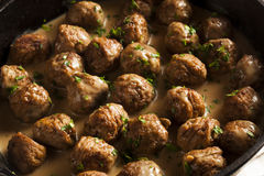 Homemade Swedish Meatballs with Cream Sauce Stock Image