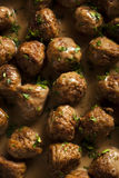 Homemade Swedish Meatballs with Cream Sauce Stock Photos
