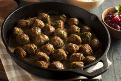 Homemade Swedish Meatballs with Cream Sauce Royalty Free Stock Photo