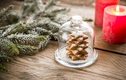 Homemade sweet Christmas tree under the glass dome Stock Image