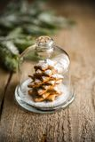 Homemade sweet Christmas tree under the glass dome Stock Photography