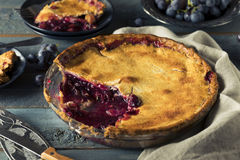 Homemade Sweet Concord Grape Pie. Ready to Eat stock photography