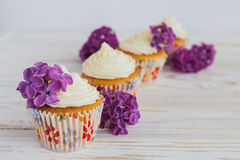 Homemade sweet cupcake with cream and flowers Stock Images