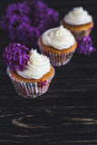 Homemade sweet cupcake with cream and flowers Stock Photos
