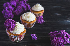 Homemade sweet cupcake with cream and flowers Royalty Free Stock Photography