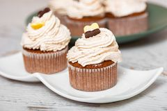 Homemade freshly baked chestnut muffins royalty free stock images