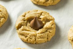 Homemade Sweet Peanut Butter Chocolate Cookies. Ready to Eat Stock Photos