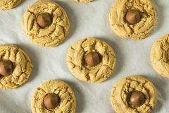 Homemade Sweet Peanut Butter Chocolate Cookies. Ready to Eat Stock Photo