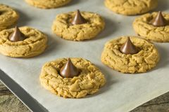 Homemade Sweet Peanut Butter Chocolate Cookies. Ready to Eat Royalty Free Stock Photography