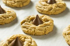 Homemade Sweet Peanut Butter Chocolate Cookies. Ready to Eat Stock Image