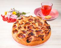 Homemade sweet round plum cake New York Times on plate with herbal tea cup and flowers on family Breakfast or birthday holyday par. Homemade sweet round plum stock photo