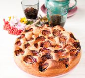 Homemade sweet round plum cake New York Times on plate with of tea coffee cup and flowers on family Breakfast or birthday holyday. Party on white vintage table royalty free stock photography