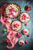 Homemade and sweet tarts with fresh berry fruits Stock Photos