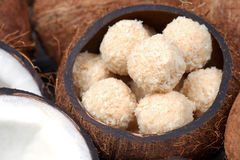 Homemade sweets in a coconut bowl Royalty Free Stock Photos