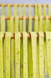 Homemade tagliatelle green Royalty Free Stock Photo