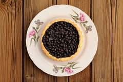 Homemade tart with whole wild blueberries in white plate with pi Royalty Free Stock Images