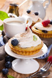 Homemade tartlets with lime curd and meringue Stock Images